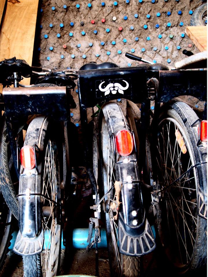 Bikes rent social business