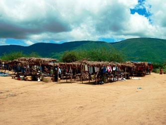 Msitu wa Tembo market