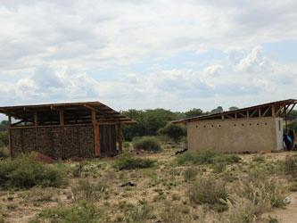 Msitu wa Tembo