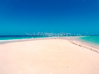 Isla arena océano Indico Pangani