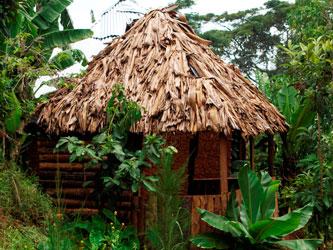 Cabaña en la aldea de Materuni