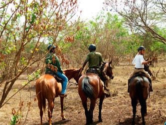 Promenade à cheval en Tanzanie