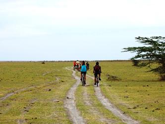 Promenade à vélo au Lac Manyara