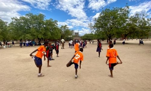 Sport and health in schools